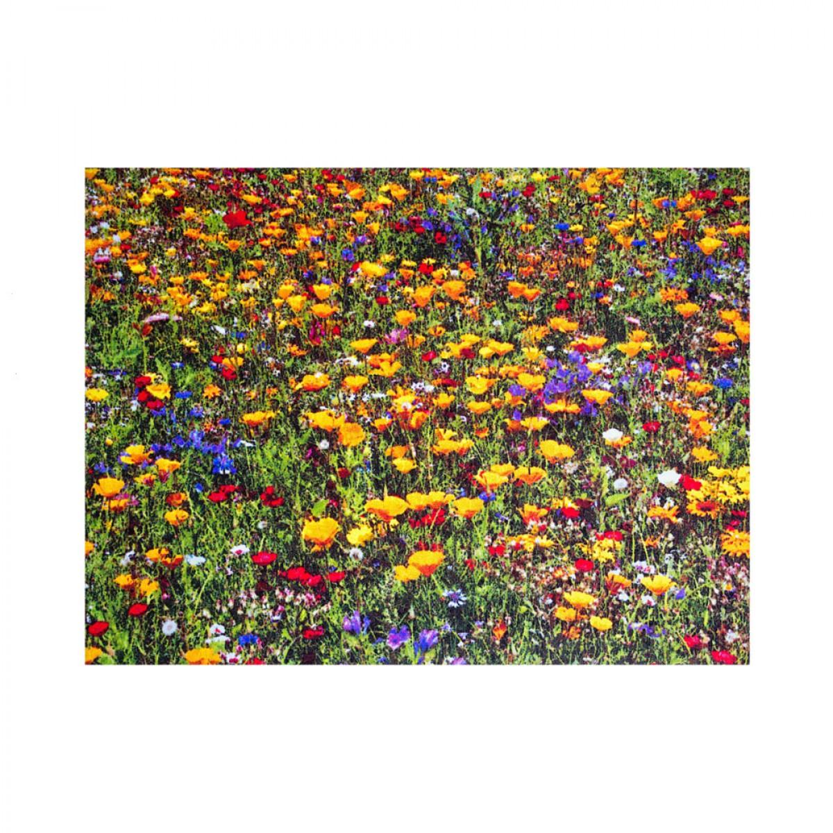 Kinderteppich blumenwiese  Sun-&-Fun-Teppich Blumenwiese Premium kaufen - verschiedene Größen ...