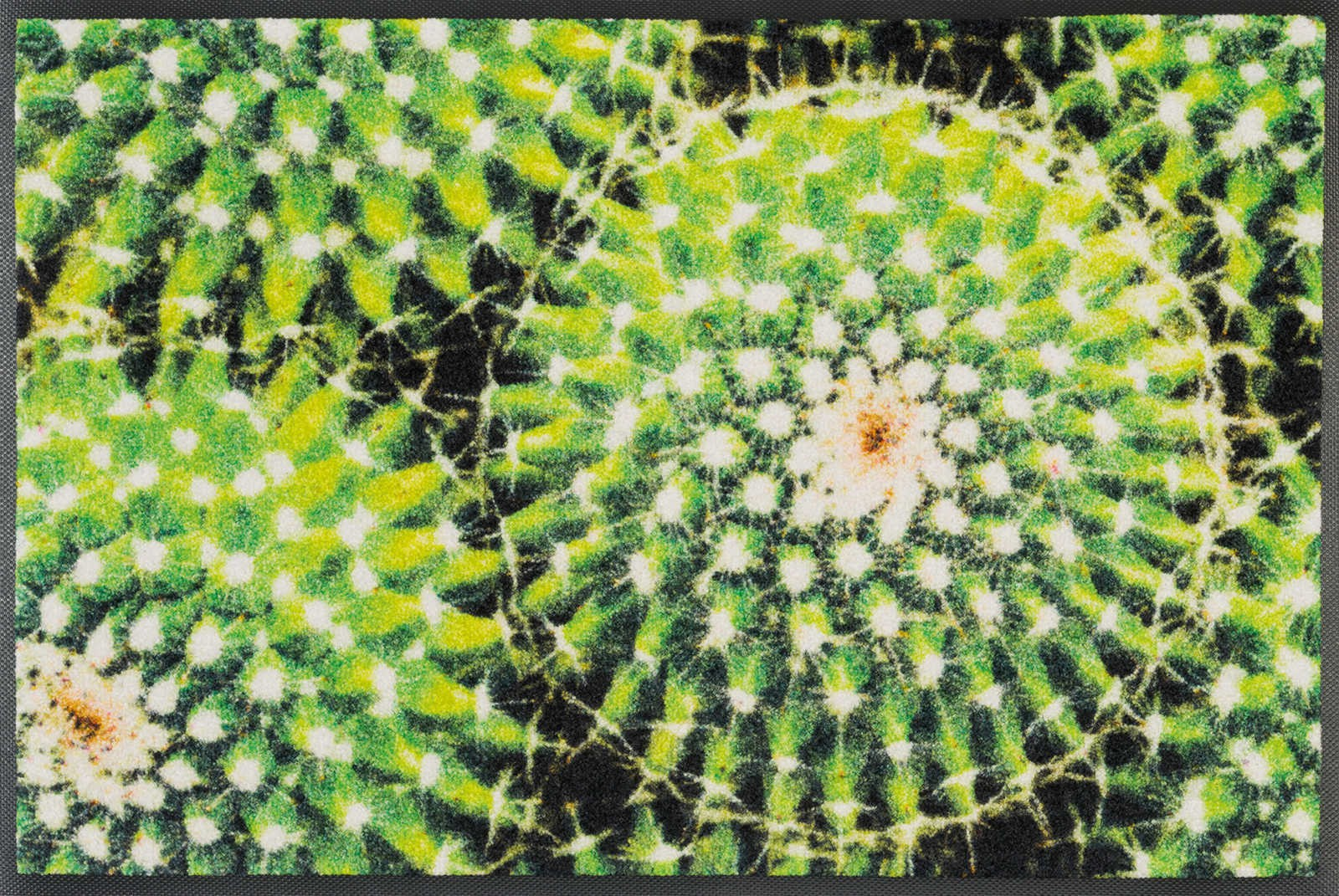 wash+dry Fußmatte Spiny Green waschbar Detailansicht