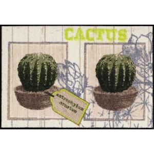 Schmutzfangmatte Cactus waschbar Salonlöwe