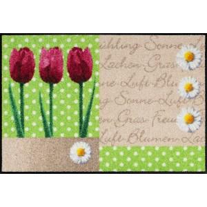 Schmutzfangmatte Frühlingsblume waschbar Salonlöwe