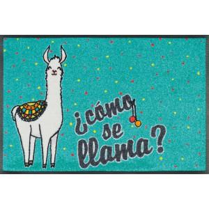 wash+dry Fußmatte Cómo Se Llama waschbar Detailansicht