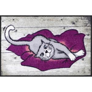 Fußmatte-eingangsbereich-katzen-cushion-cat-salonlöwe