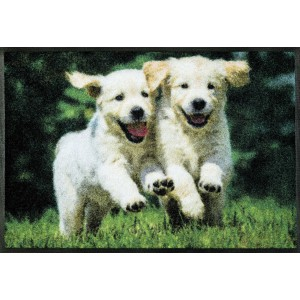 Fußmatte wash+dry Lovely Dogs waschbar Detailansicht
