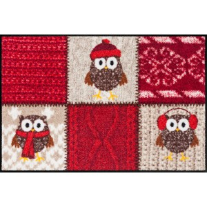 Schmutzfangmatte Winter Owls Salonlöwe waschbar