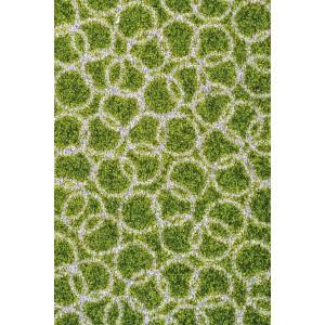 Fußmatte Schmutzfangmatte Ringe moosgrün waschbar