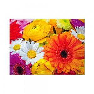 Sun & Fun Teppich Blüten Premium