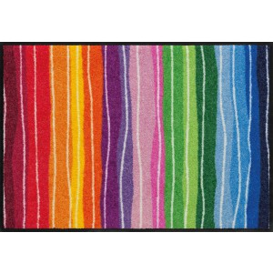 Schmutzfangmatte waschbar Salonlöwe